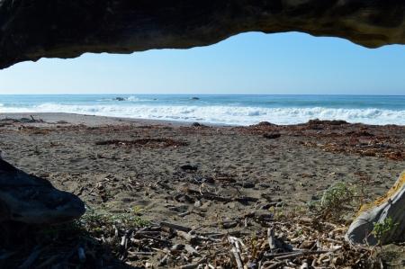 2014-01-20 Central CA Coast 027