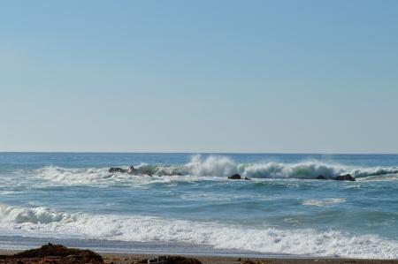 2014-01-20 Central CA Coast 048