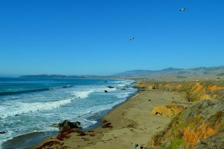 2014-01-20 Central CA Coast 124