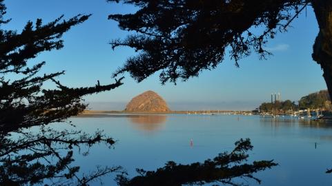 2014-01-20 Morro Bay 014