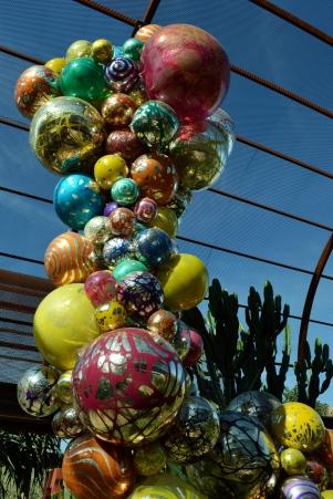 2014-01-30 Desert Botanical Garden 231