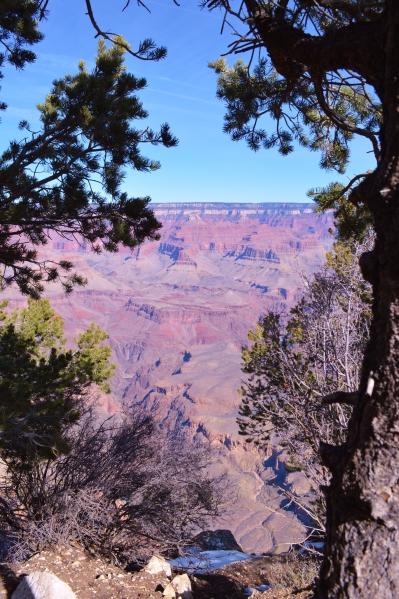 2014-02-13 Arizona 056