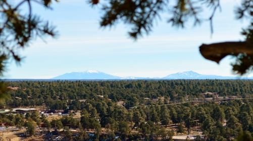 2014-02-13 Arizona 178