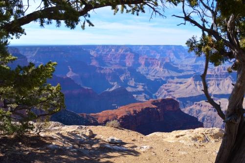 2014-02-13 Arizona 269