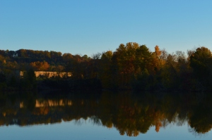 2014-11-07 Tennessee 028